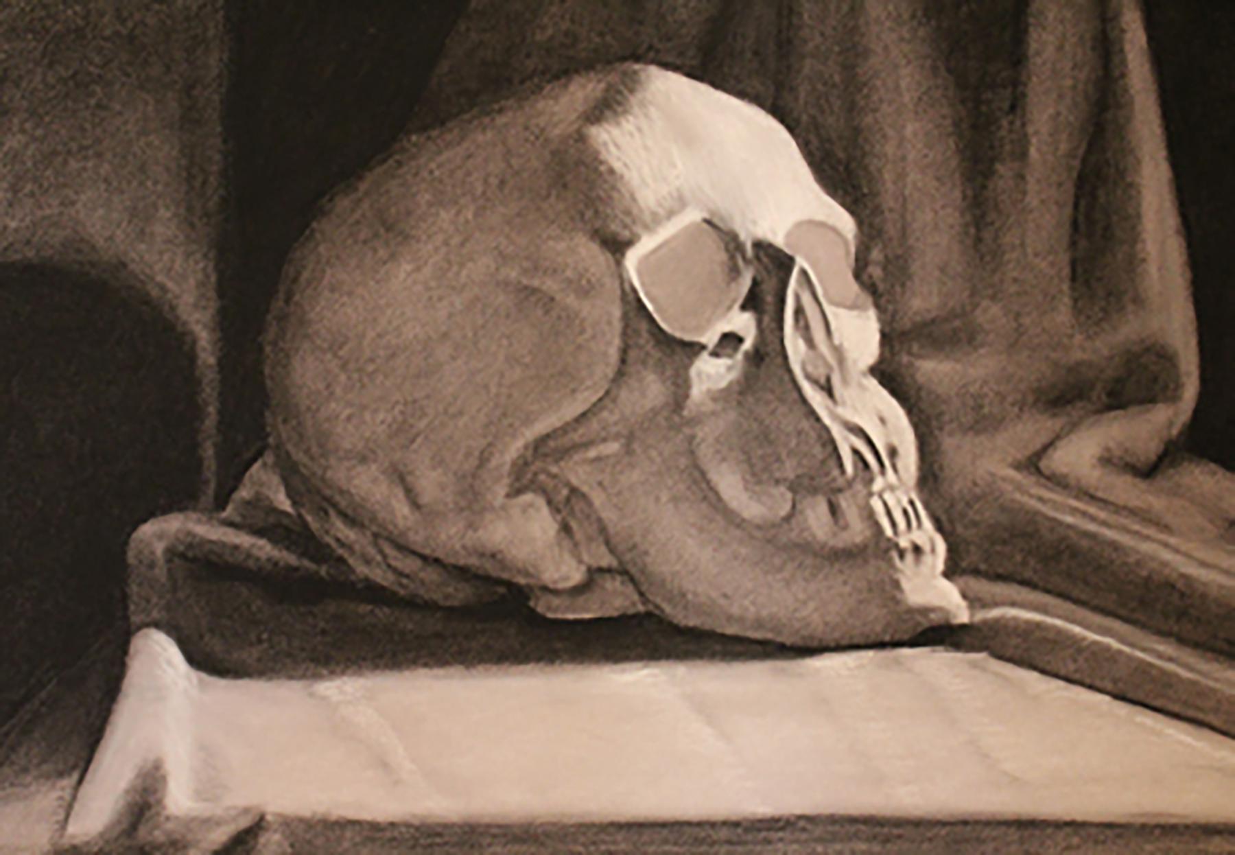 Drawing skull.jpg