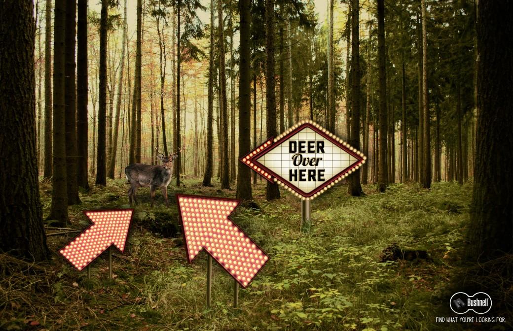 Bushness-Deer-Here1-1040x672.jpg
