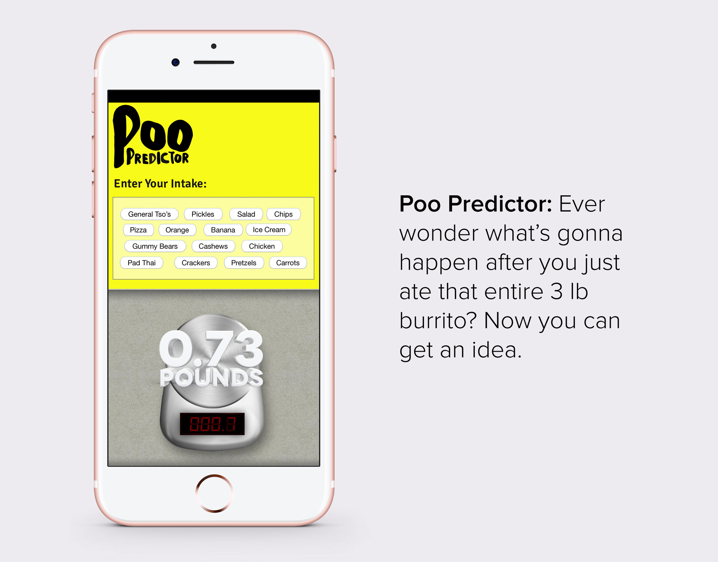 Poo Predictor.jpg