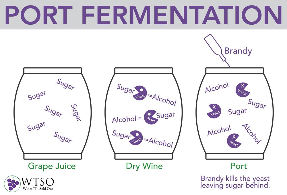 port fermentation.jpg