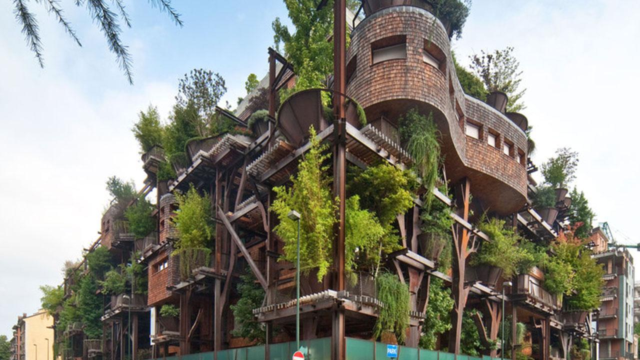 031615-cc-treehouse-thumb.jpg