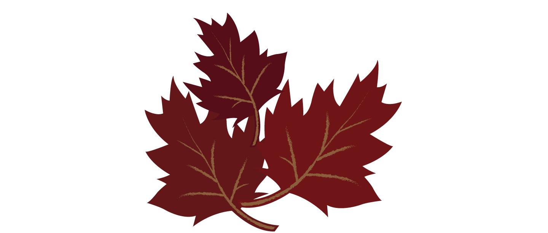 Leaves_12.jpg