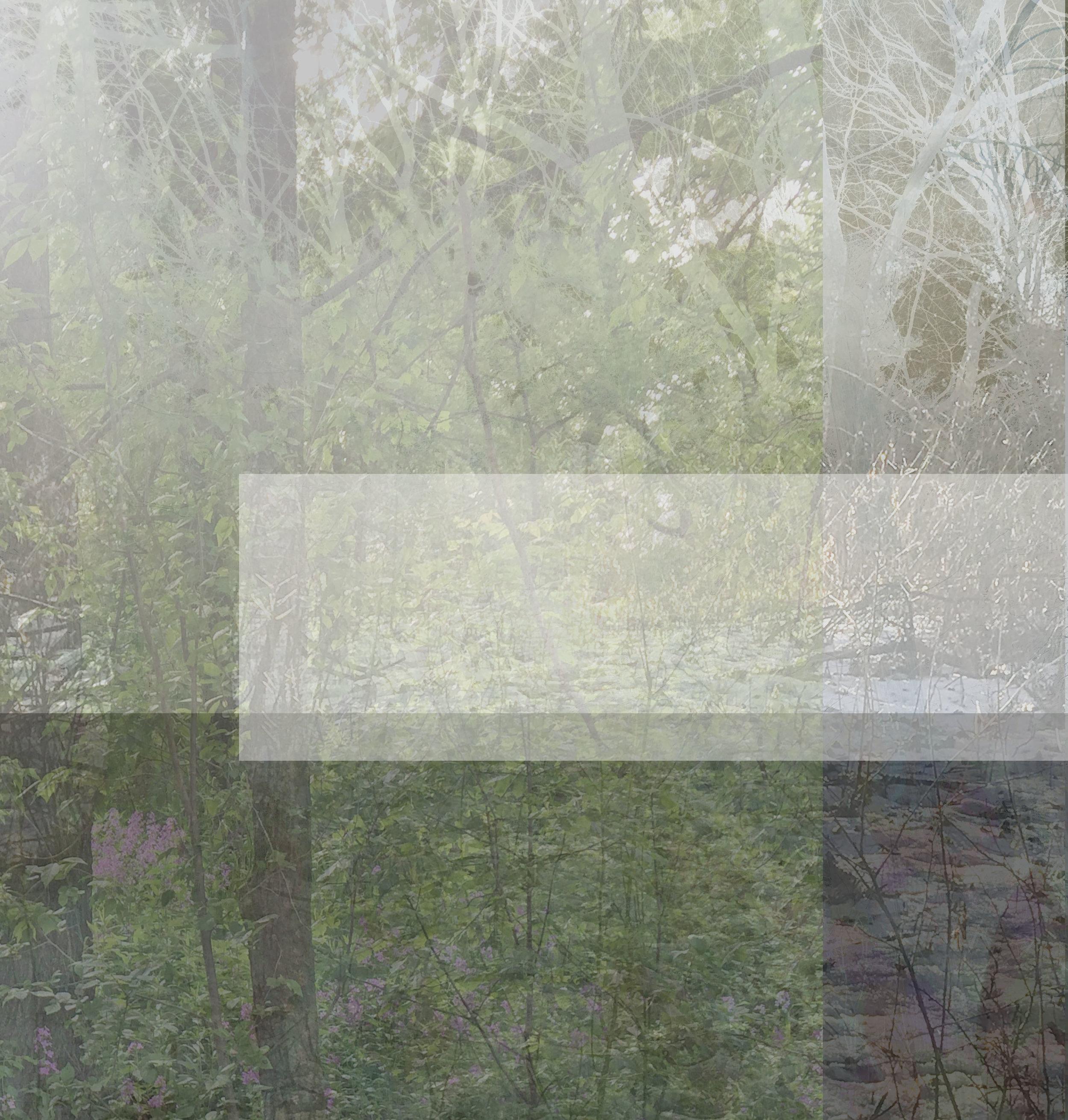woodsvessel85.jpg