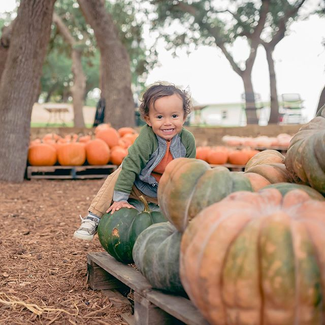 This guy is T W O YEARS OLD!!! He's such a BRIGHT light in our family and keeps everyone smiling and filled with pure JOY. 🧡 Thanks for making October even sweeter.