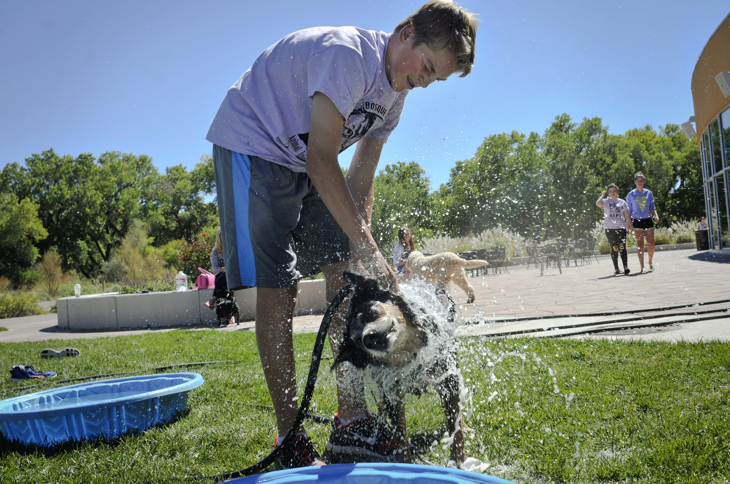 Community - At the Dawg House Playground & Salon, we strive to make a difference in the pet world by extending a helping hand to dogs in need around the community.