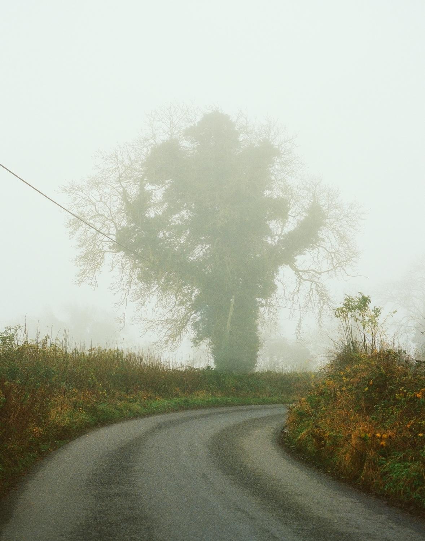 FoggyIrishLandscape.jpg
