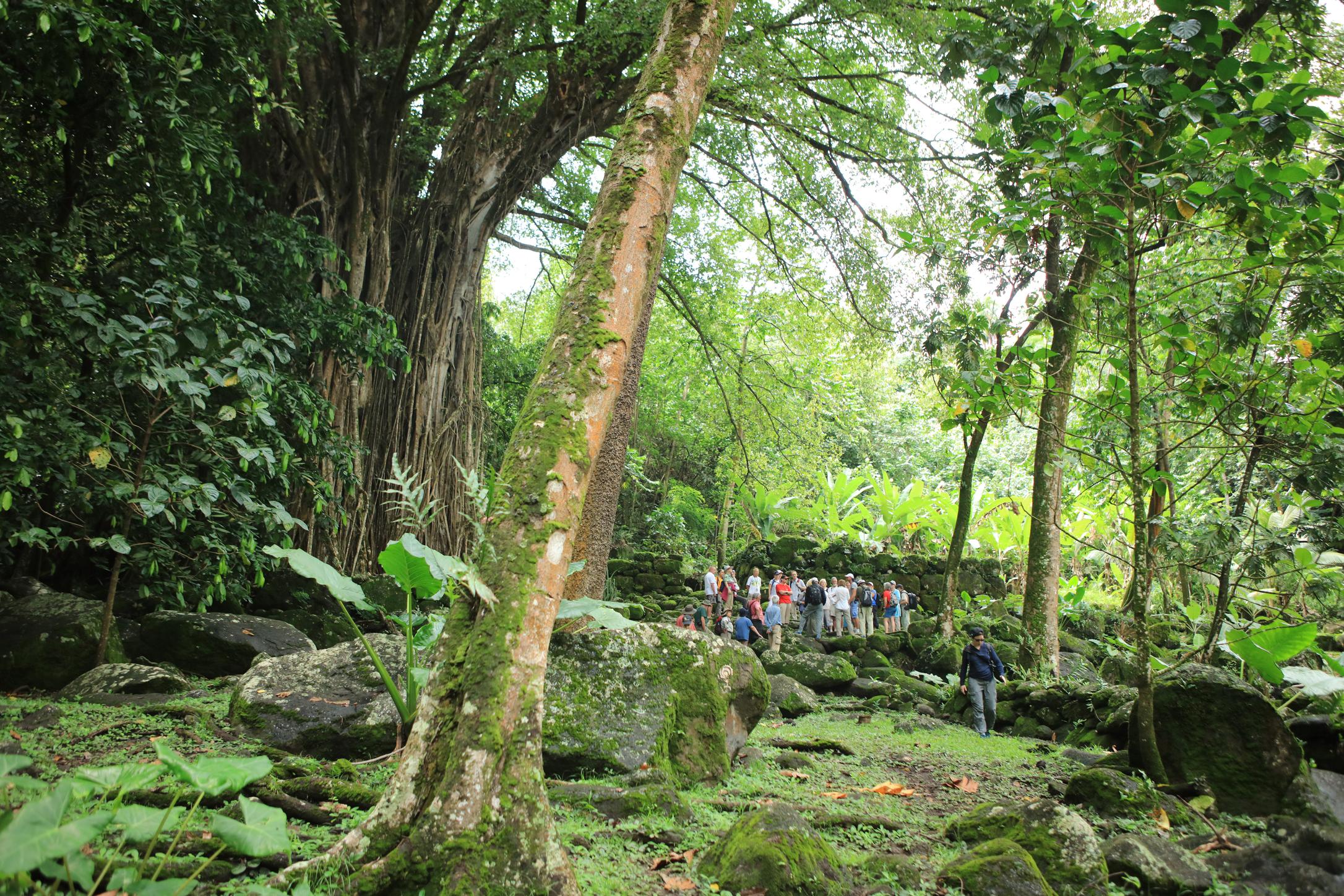 Nuku Hiva - Hiking activity