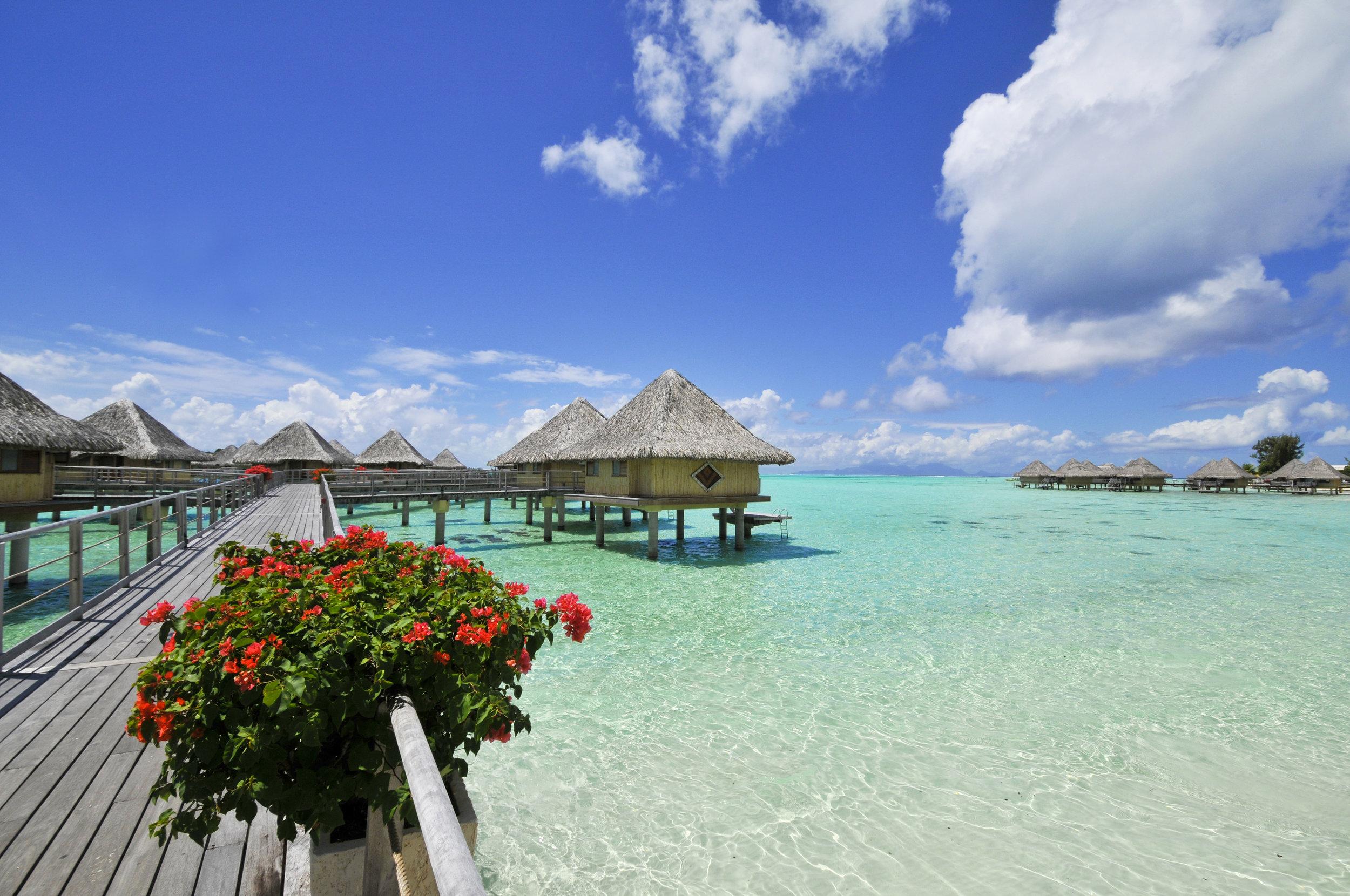 InterContinental Bora Bora Le Moana Resort pontoon.jpg