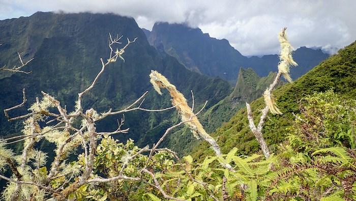 Along the Mt Marau / Diademe ridgeline