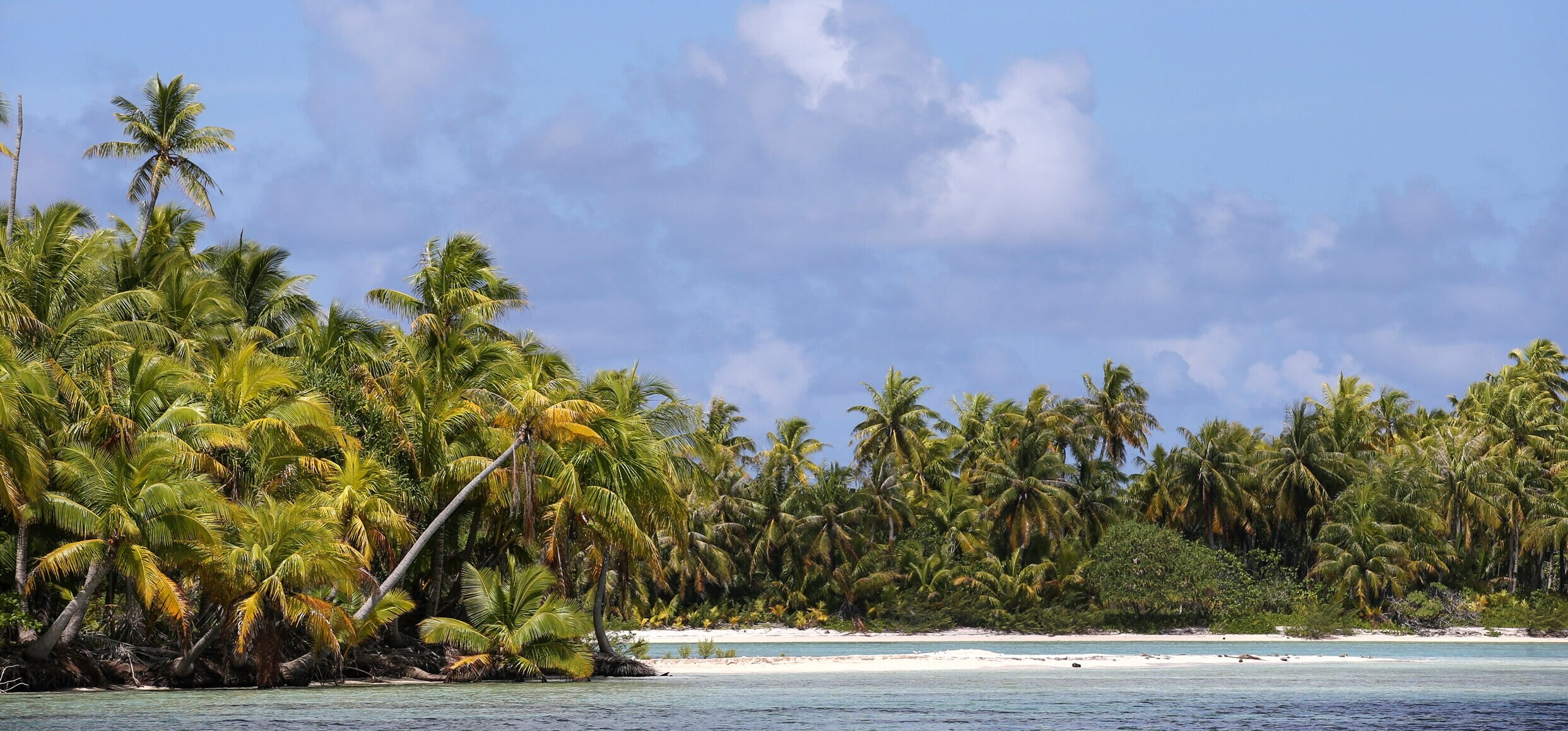 P2_08_RANGIROA_tahiti_tourisme_rangiroa+%2832%29_%C2%A9+Vincent+LYKY.jpg