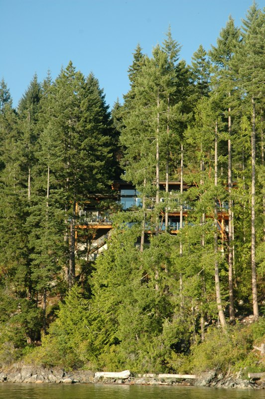House in the trees above a high tide