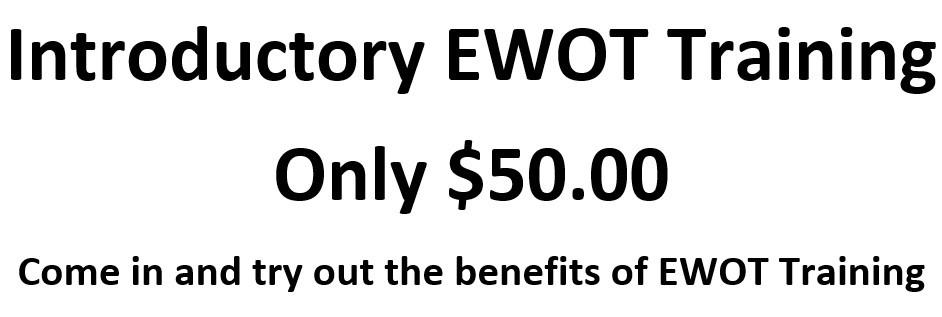 Ewot Introductory.jpg