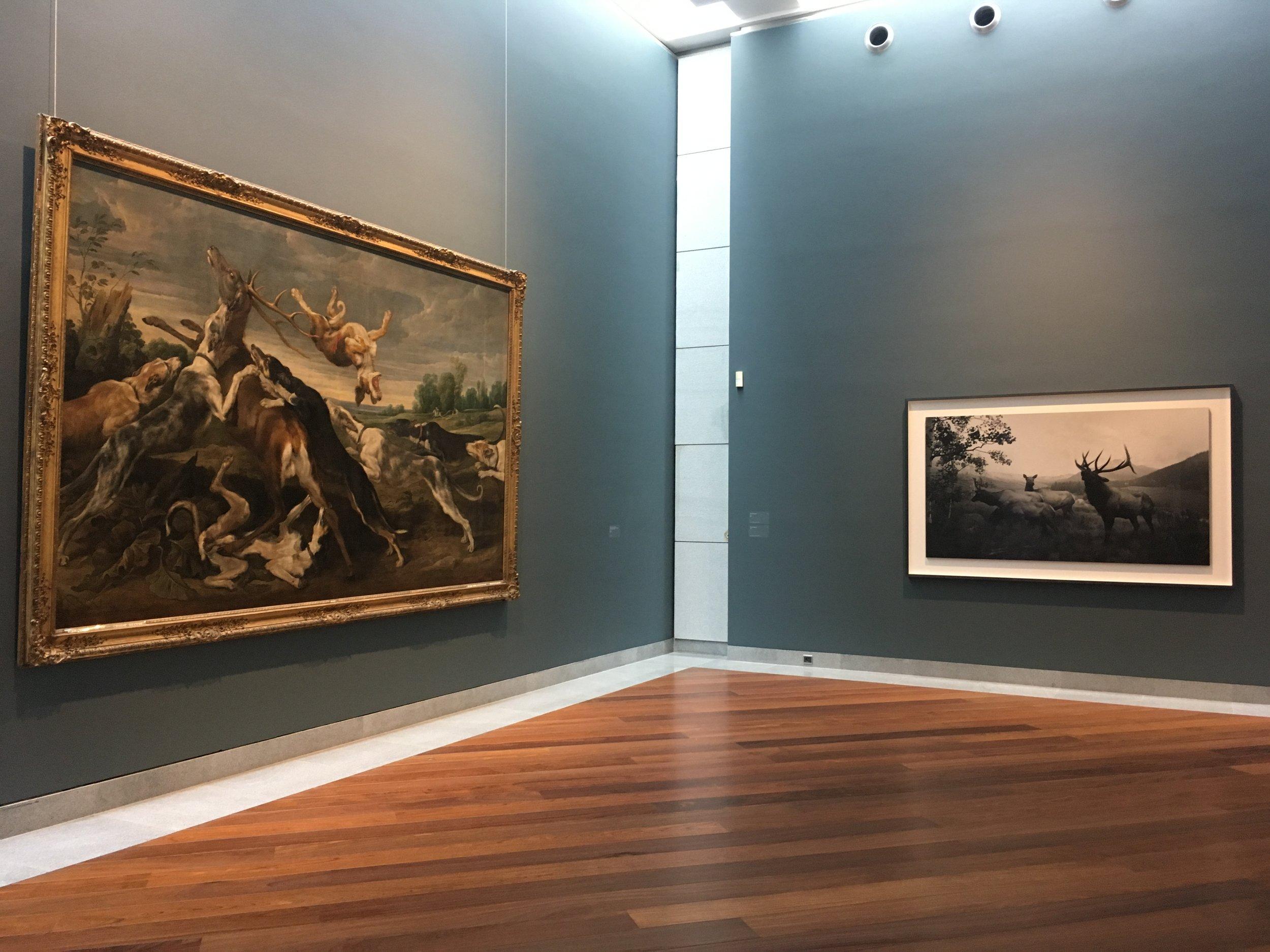 Hiroshi Sugimoto - Still Life, vue d'exposition, Musée royaux des Beaux-Arts de Belgique.
