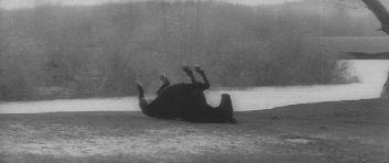 andrei rublev horse.jpg