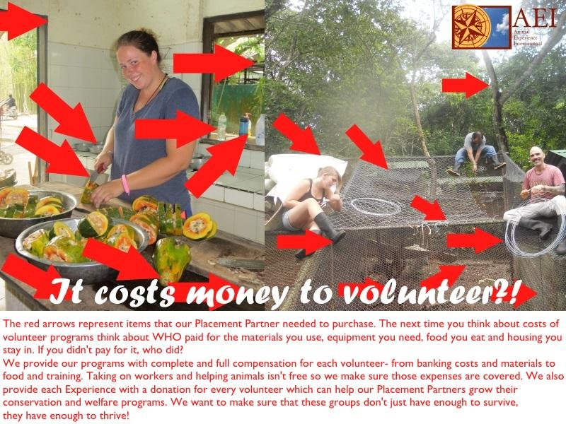 It costs money to volunteer