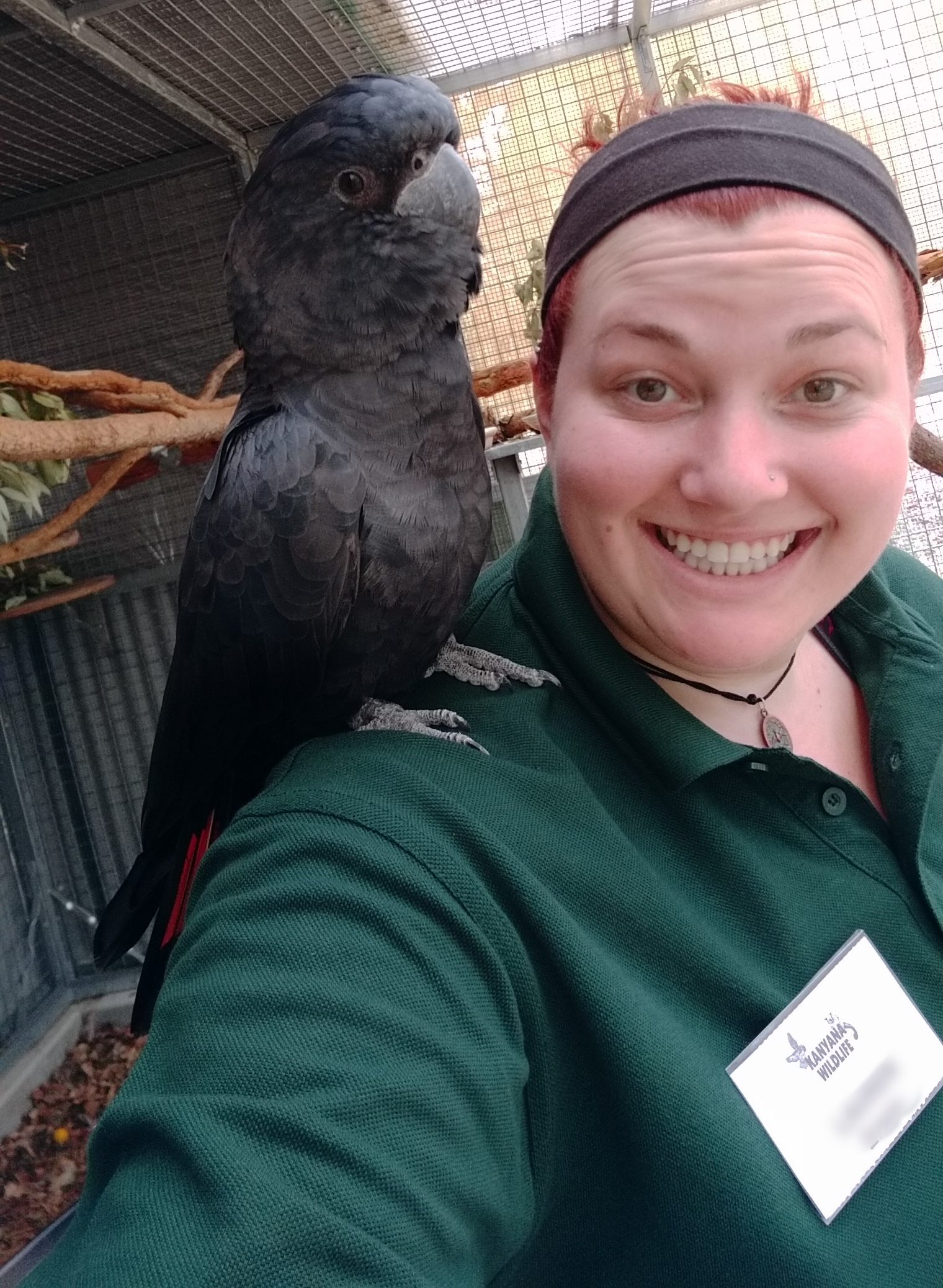 An international volunteer and a bird brain in sanctuary.