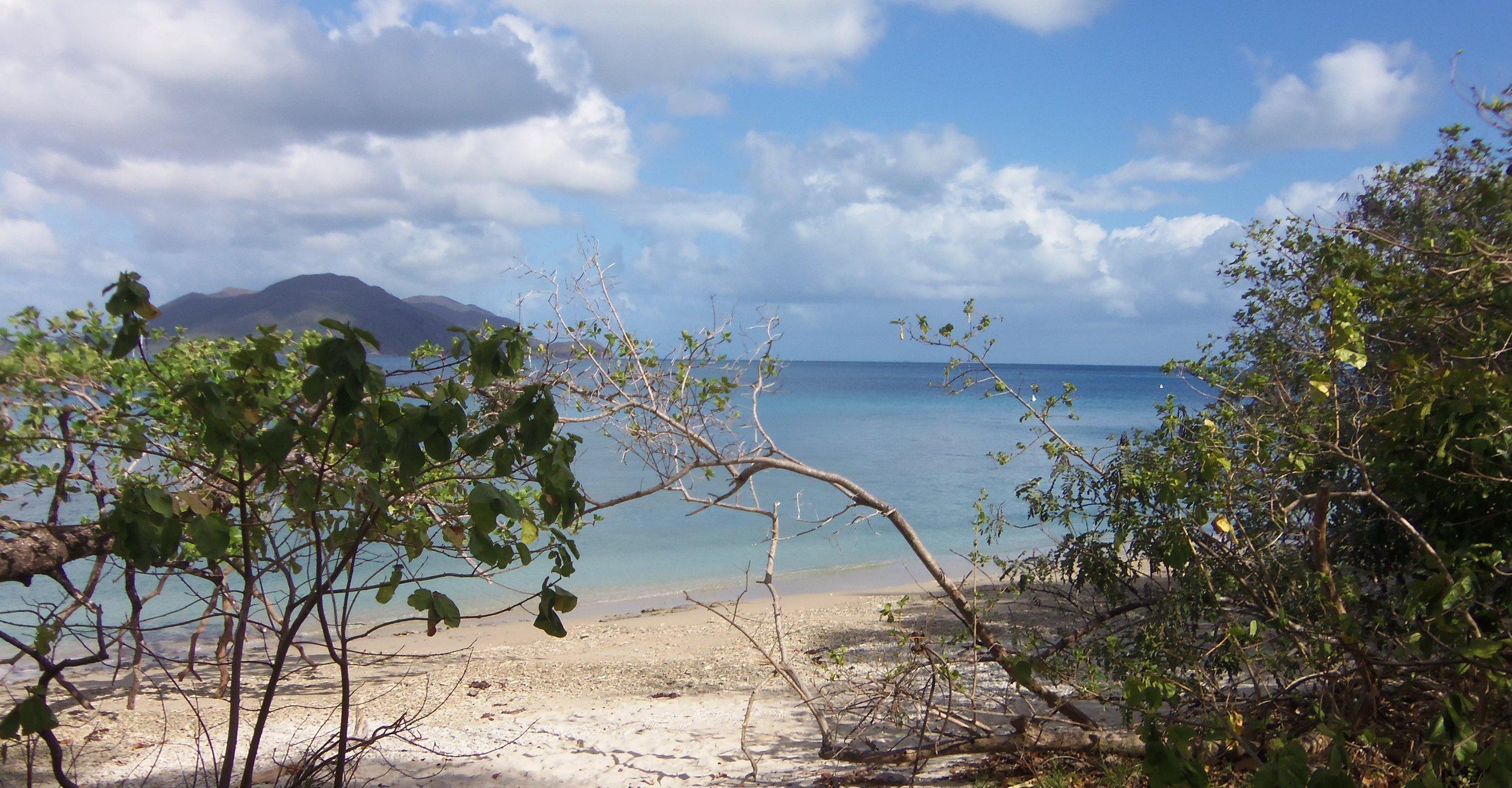 Sea Turtle Cairns 103.JPG