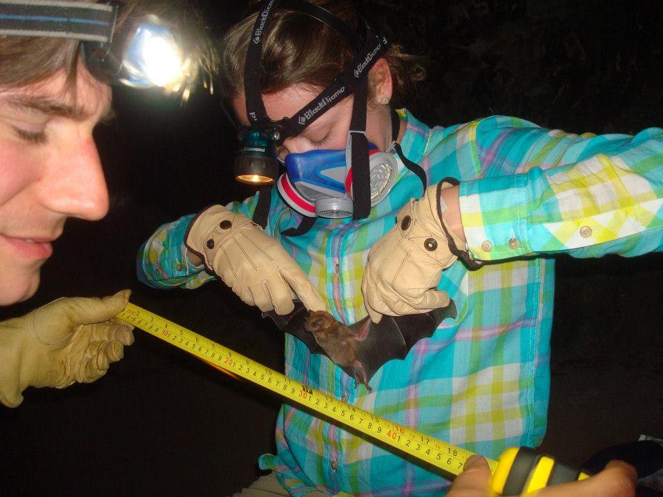 measuring a bat.jpg