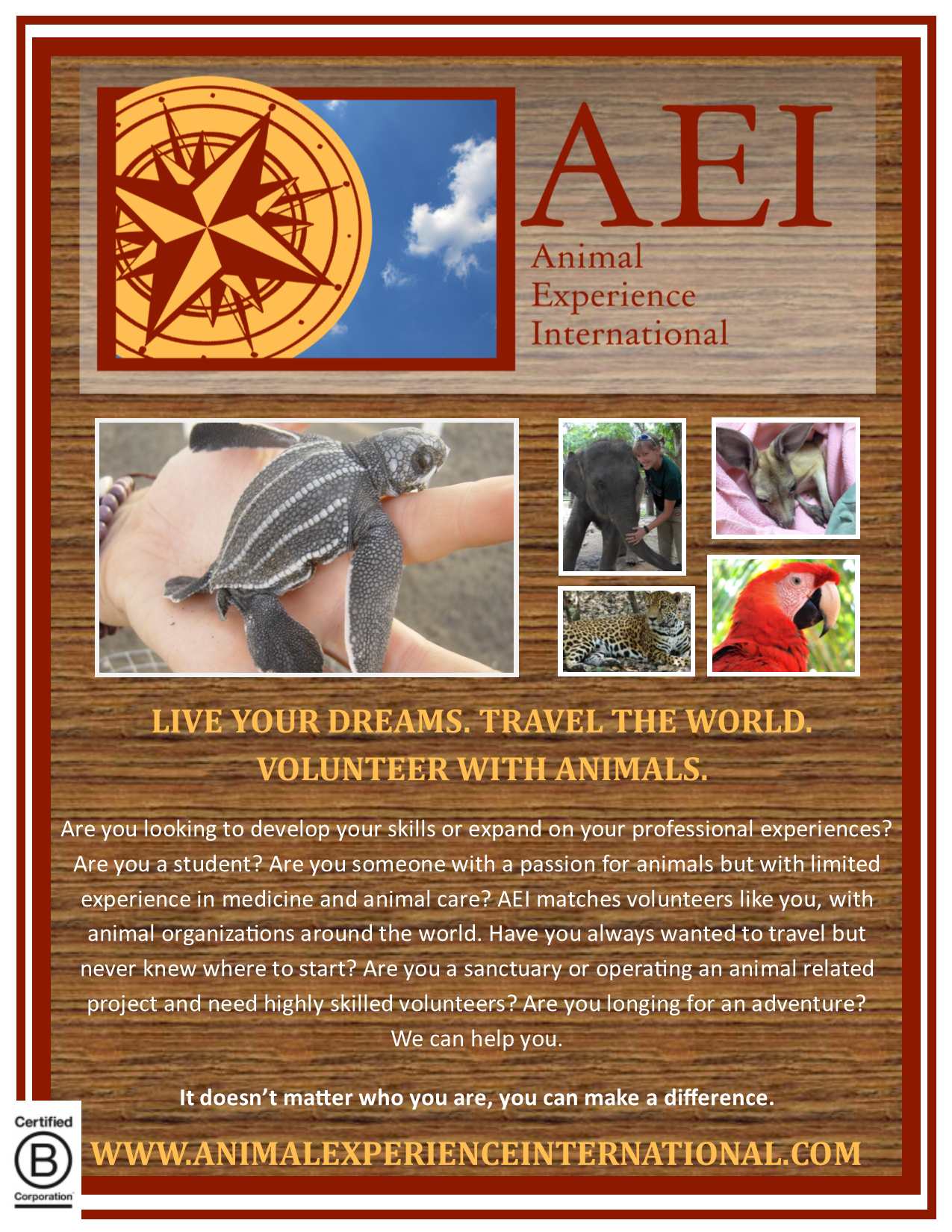 AEI poster.png