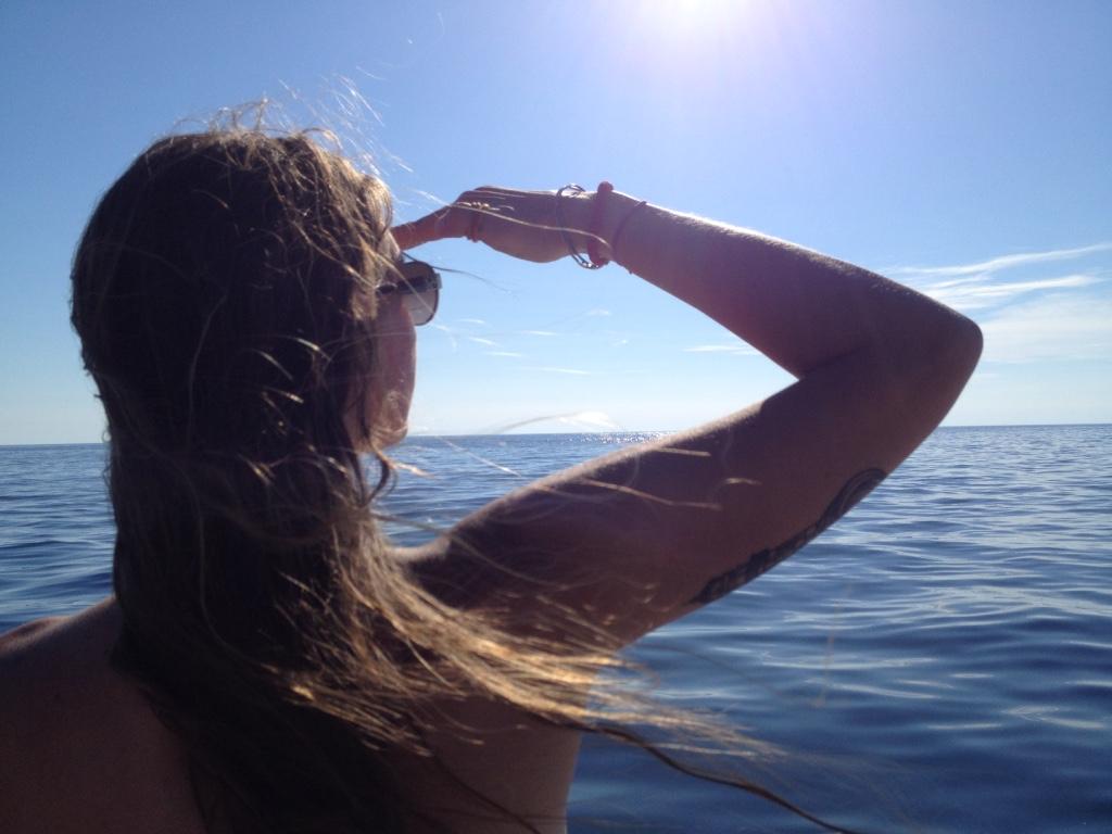 Volunteers look for dolphins.
