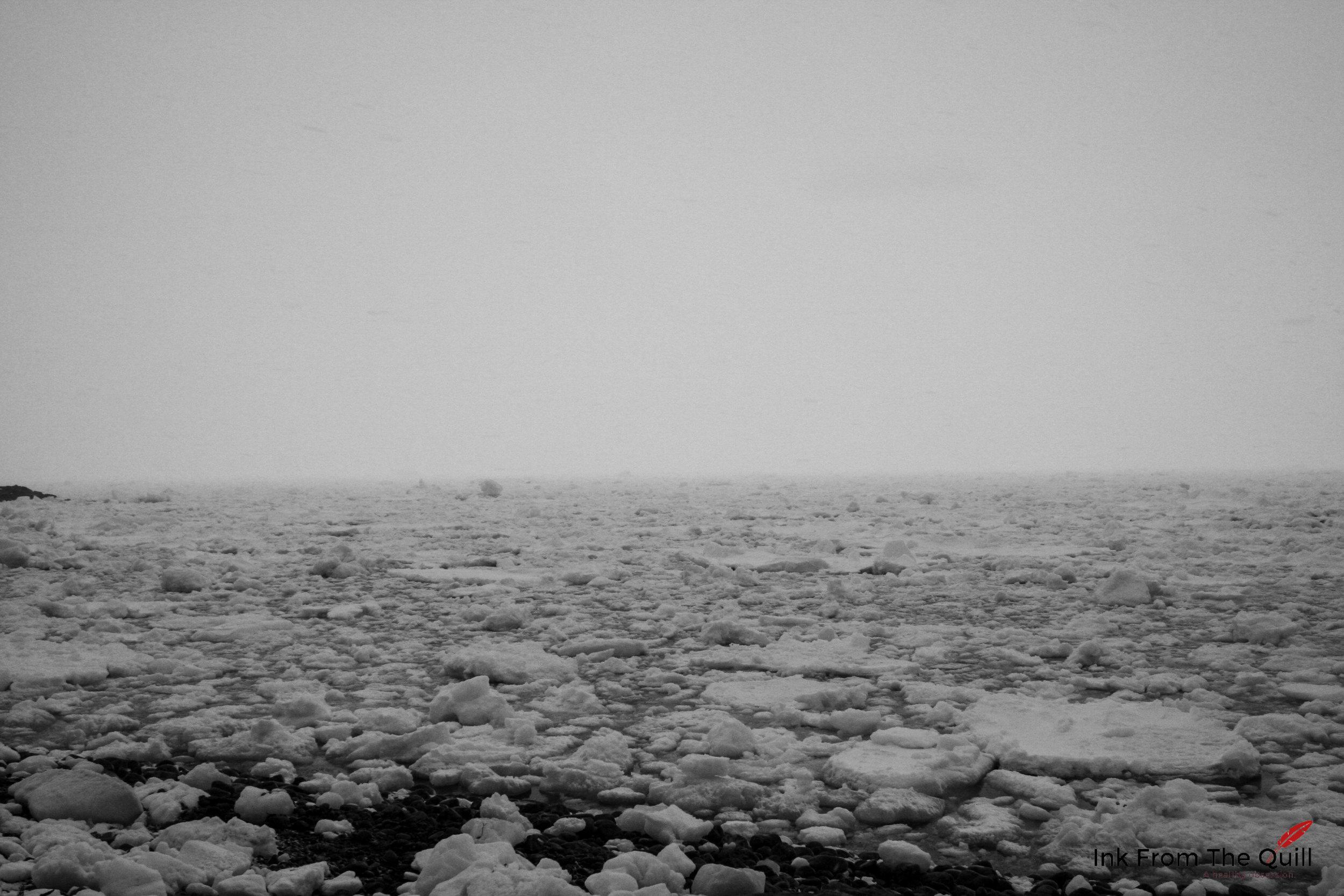 Sea ice in Portugal Cove, Newfoundland