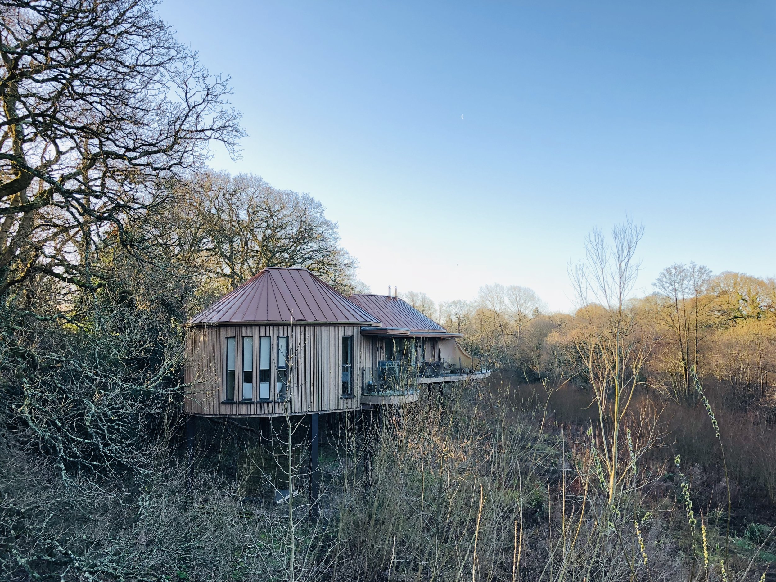 chewton_glen_treehouse.jpg
