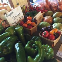 Copy of Fresh Organic Foods