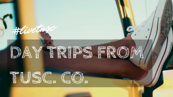 day trip blog post banner.png