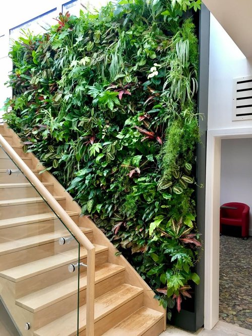 North Finchley Living Wall