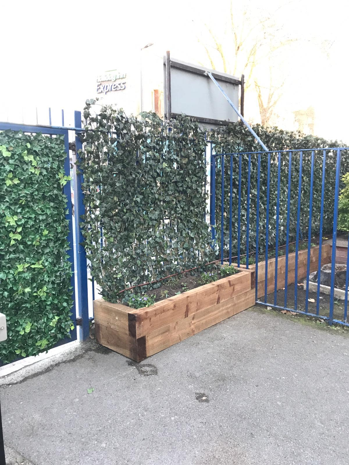 Wyvil Primary School Green Screens and artificial ivy