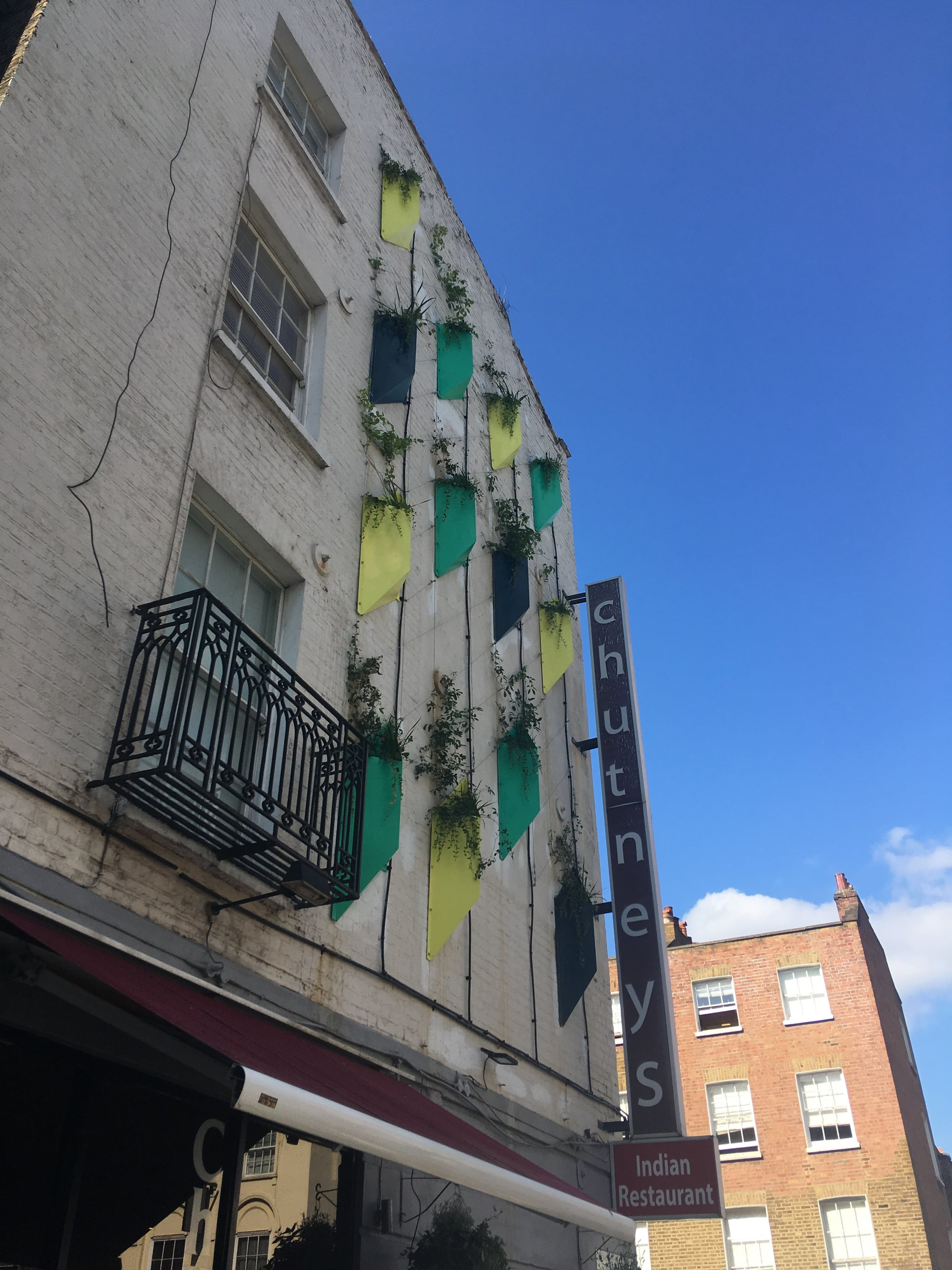 View of green wall from Drummond Street