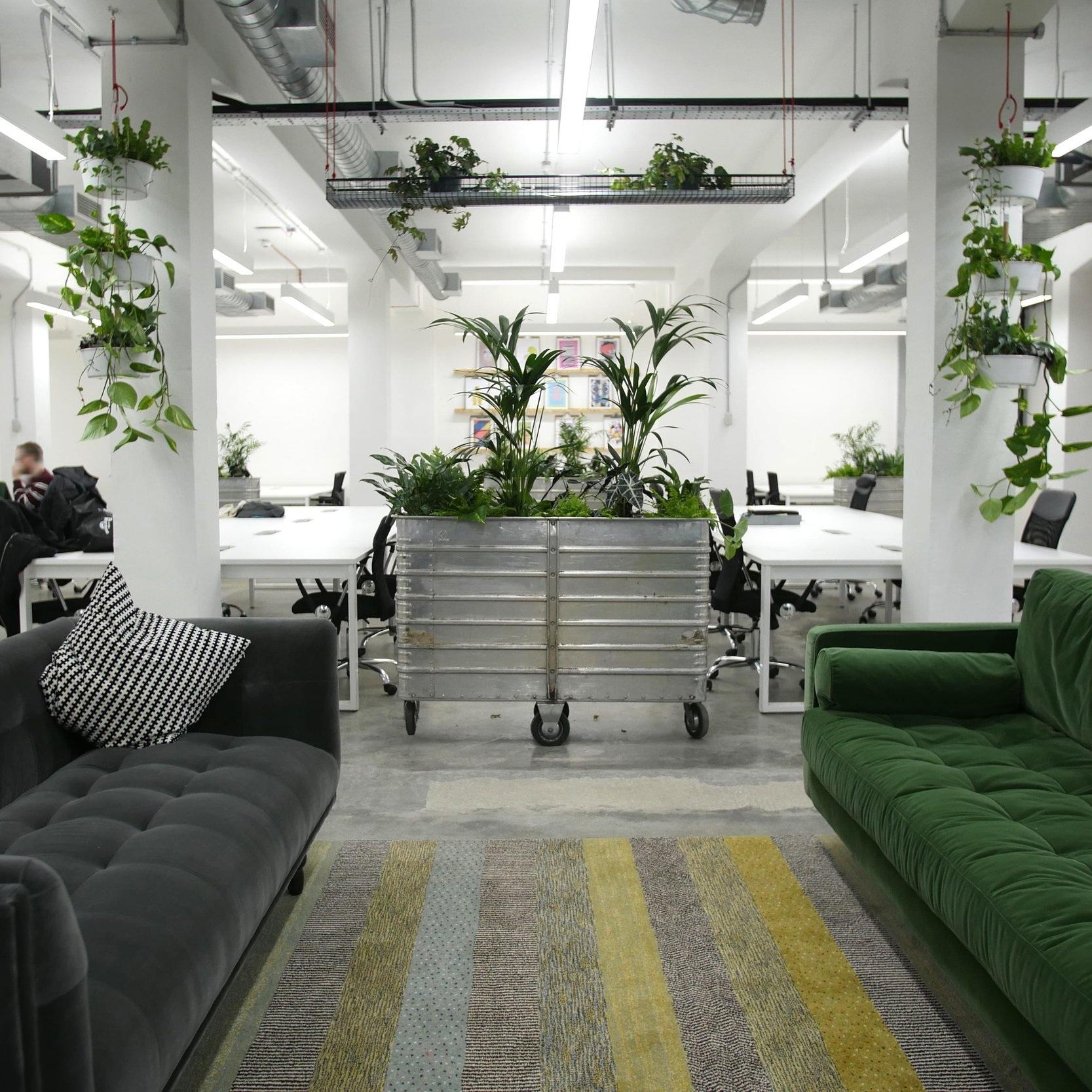 Meristem+Design+interior+planters-min.jpg