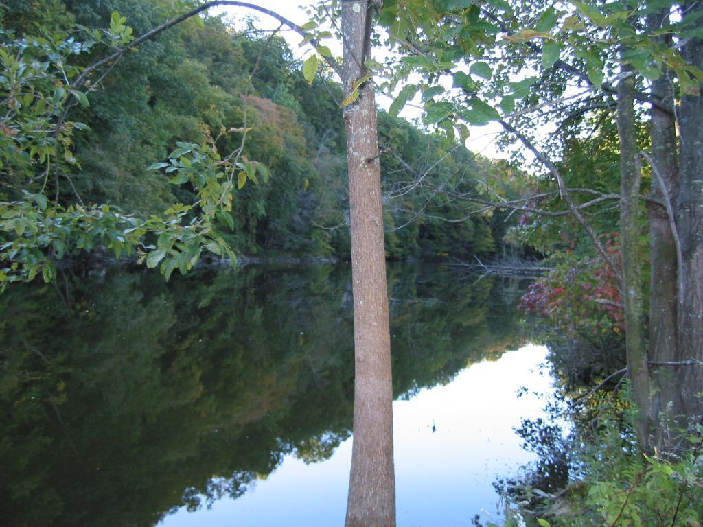 Pine Pond, Frankford NJ