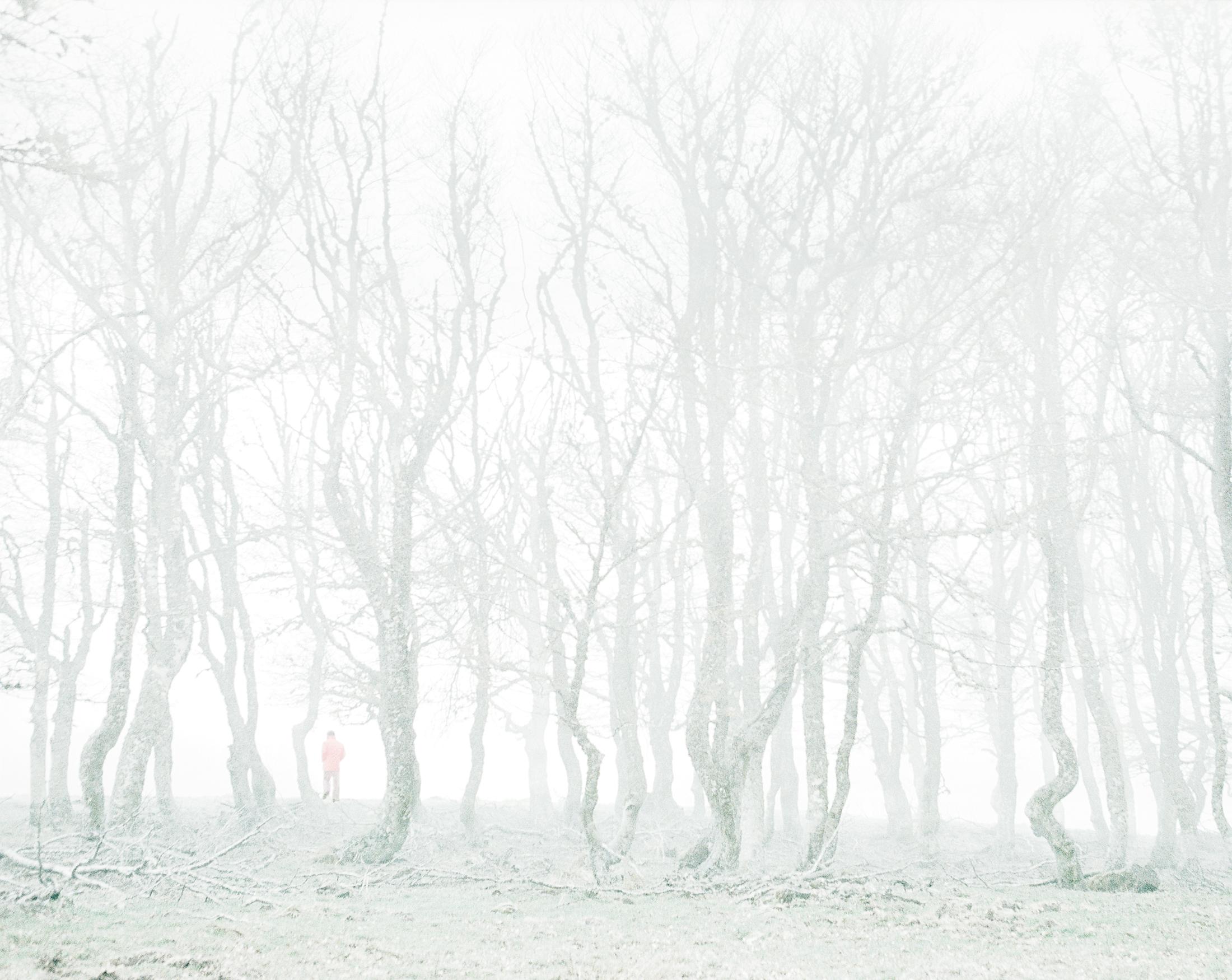 HERMES_08©SIRVAIN.jpg