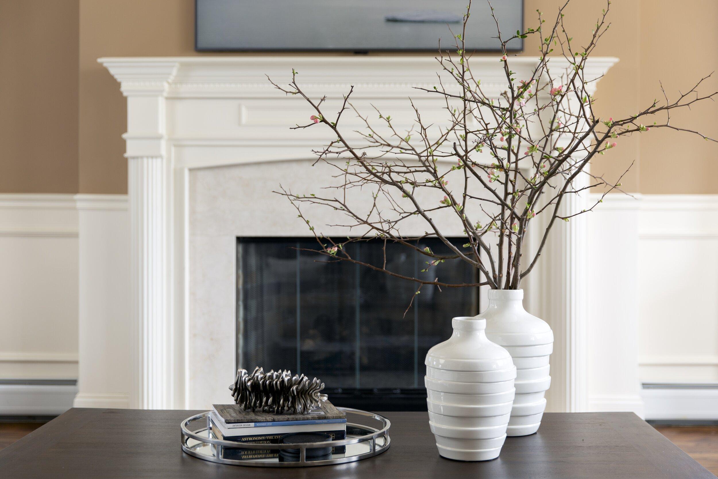 living-room-transitional-tc-interiors-5.jpeg