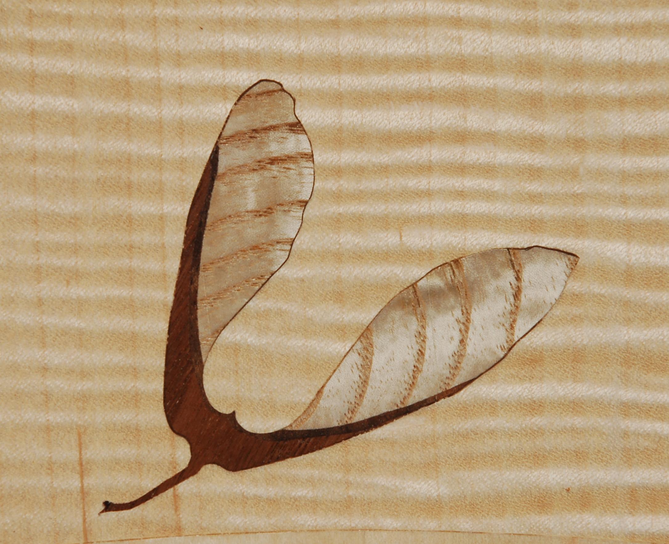 Maple Seed Pod
