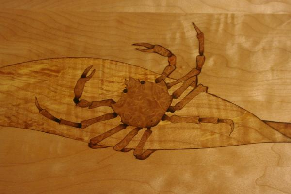 Kelp Crab — Lopez Sea Creature Table