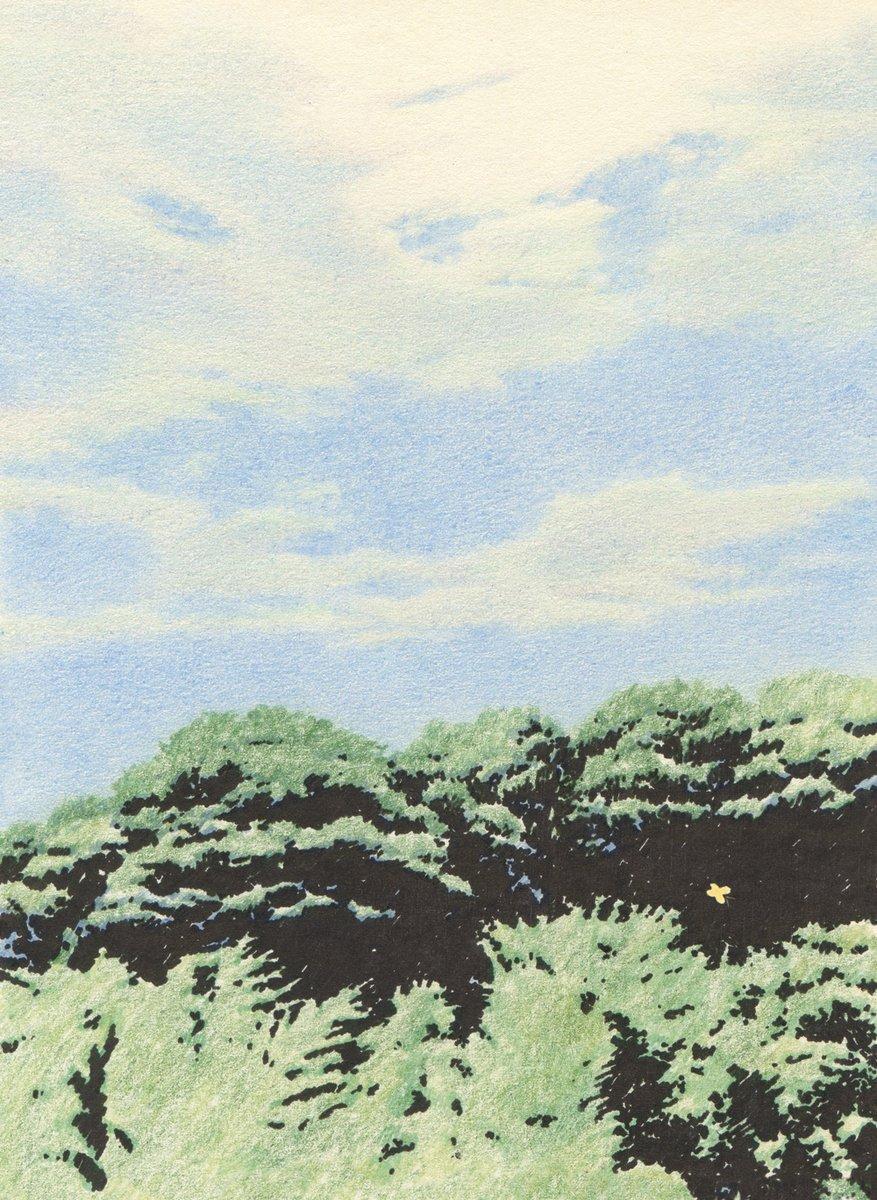K8.jpg