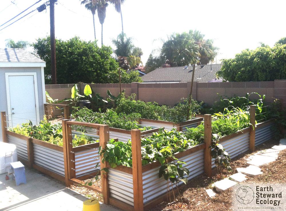 Edible Landscapes Earth Steward Ecology Inc Eco Friendly Lawn