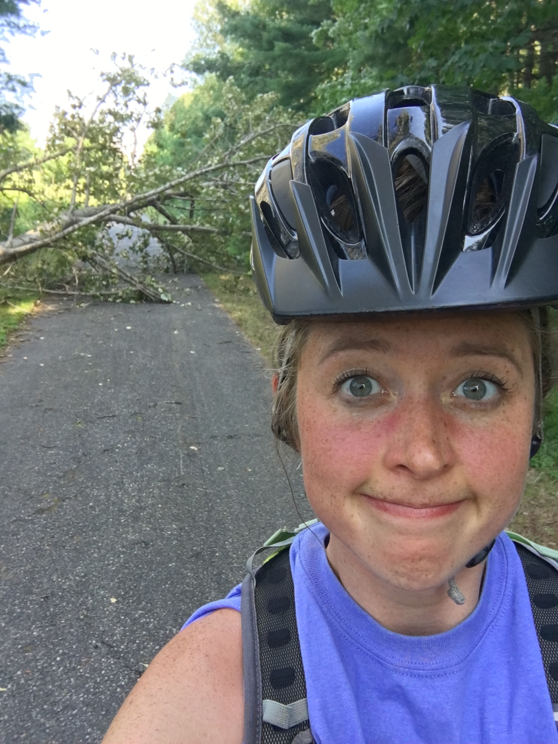 Biking in northern Michigan poses slightly different road hazards than biking in downtown Chicago . . .
