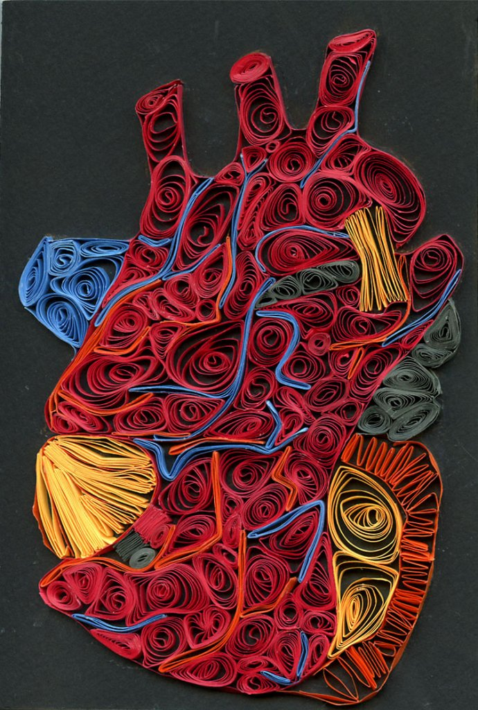 Observational heart -- Paper quilling