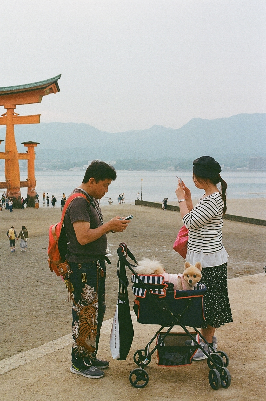 Family Portrait / Miyajima