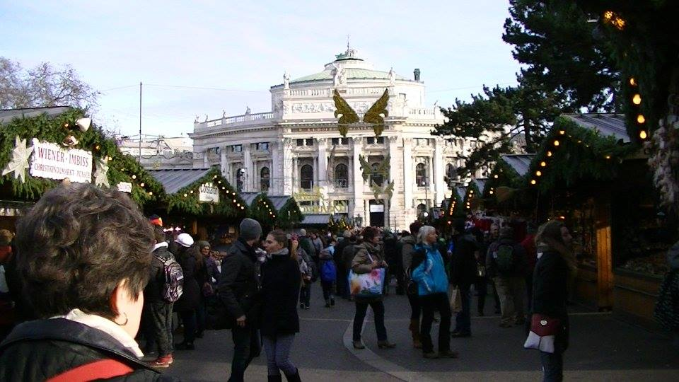 christmas lights in vienna.jpg