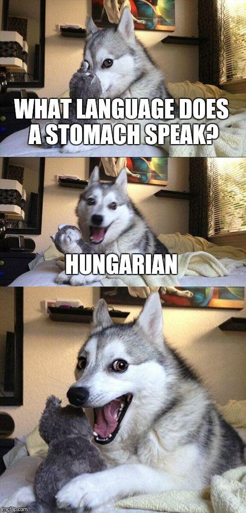 bad jokes.jpg