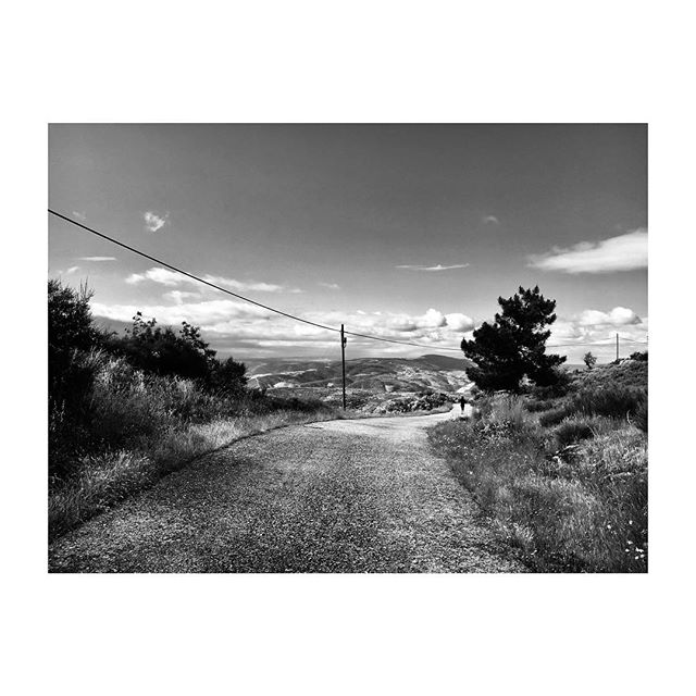 #DouroValley #Barcos #Portugal #Landscape #Vineyards #Road #BlackAndWhite #Photography