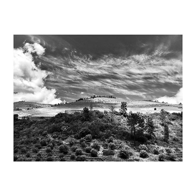 #DouroValley #Portugal #Landscape #Vineyards #Clouds #BlackAndWhite #Photography