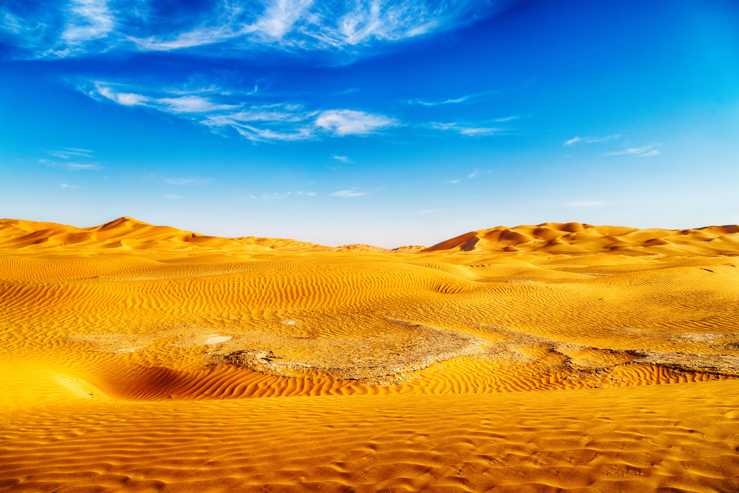 A desert is an area that gets less than 10 inches of rain per year.