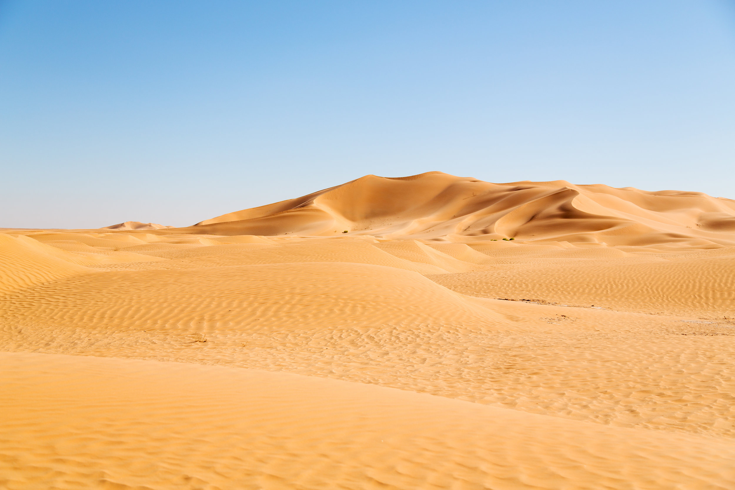 Deserts are places that get less than 10 inches of rain per year.