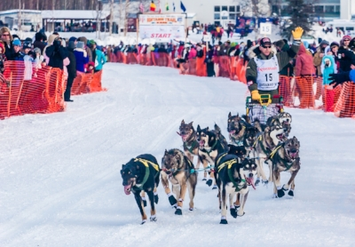 Click the picture to go to the Iditarod website. It even has a special section for teachers and students.