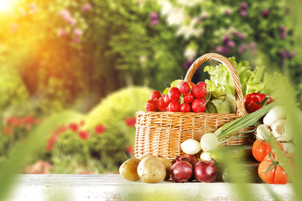Fruits and vegetables come from different parts of plants.